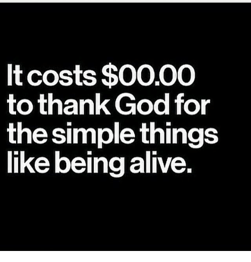 Alive, Memes, and 🤖: It costs $0000  to thank God for  the simple things  like being alive.