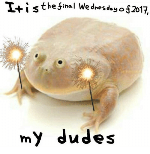 Wednesday, Final, and My-Dudes: It i s the final Wednesday  2017,  my dudes