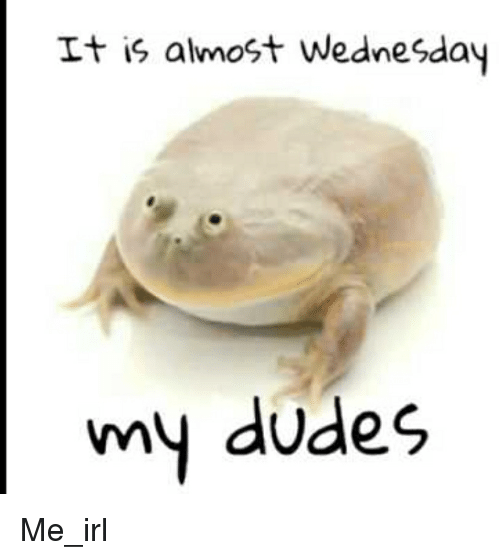 Wednesday, Irl, and Me IRL: It is almost Wednesday  my dudes