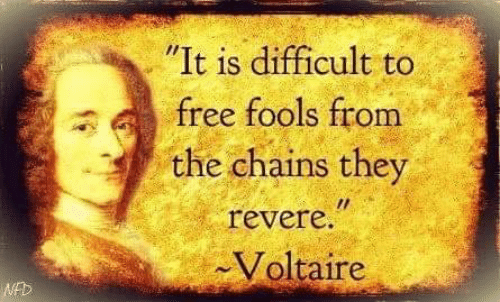 It Is Difficult to Free Fools From the Chains They Revere Voltaire WED |  Meme on ME.ME