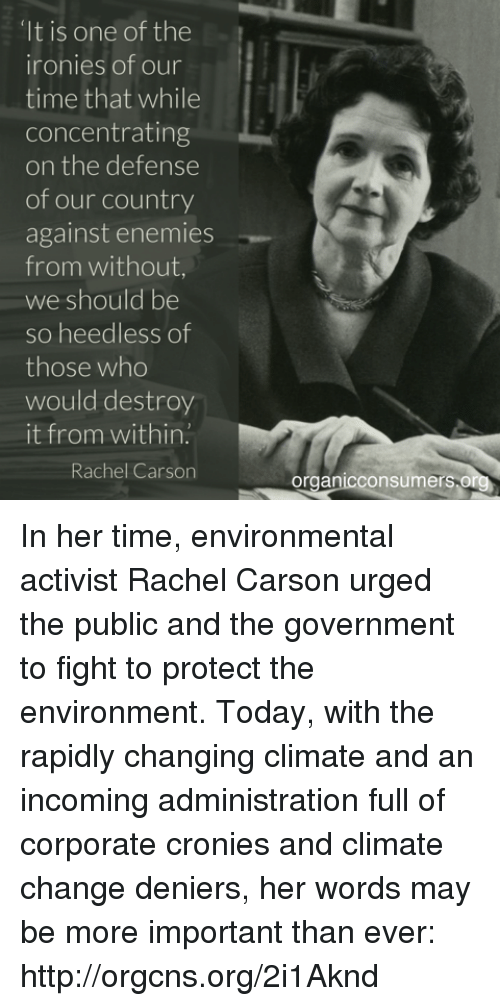 rachel carson and the fight against