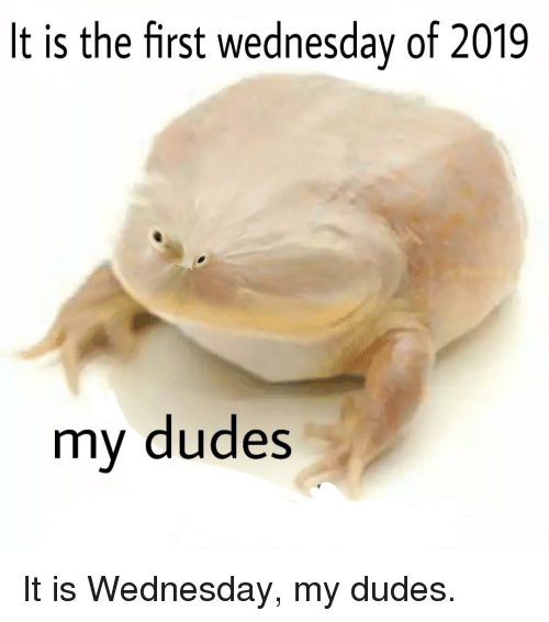 Wednesday, First, and It Is Wednesday My Dudes: It is the first wednesday of 2019  my dudes