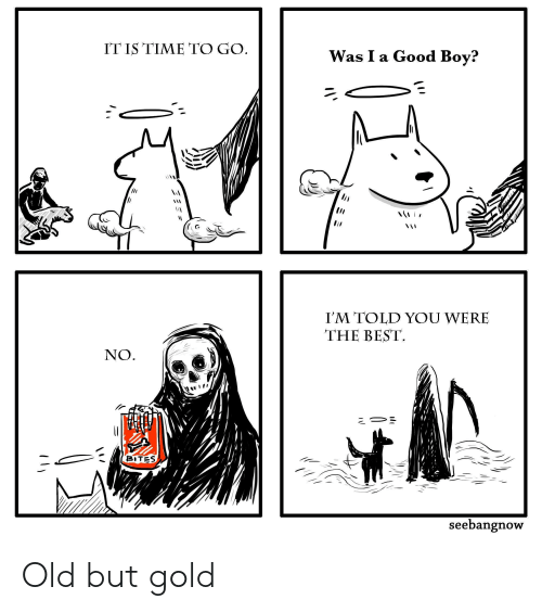 Best, Good, and Time: IT IS TIME TO GO  Was I a Good Boy?  I'M TOLD YOU WERE  THE BEST  NO  BITES  seebangnow  ミミミ Old but gold
