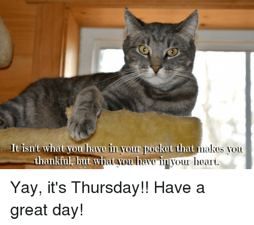 It Isnt What You Have In Your Pocket That Makes You Thankful But Wh Ayou Liavo In Vour Heari Yay It S Thursday Have A Great Day Meme On Me Me 50+ funny thursday meme compilation 2020 edition: wh ayou liavo in vour heari yay