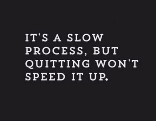 Speed, Slow, and Won: IT S A SLOW  PROCESS, BUT  QUITTING WON T  SPEED IT UP.