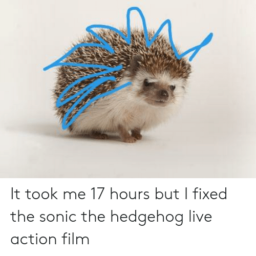 Sonic Christmas Hours.It Took Me 17 Hours But I Fixed The Sonic The Hedgehog Live Action