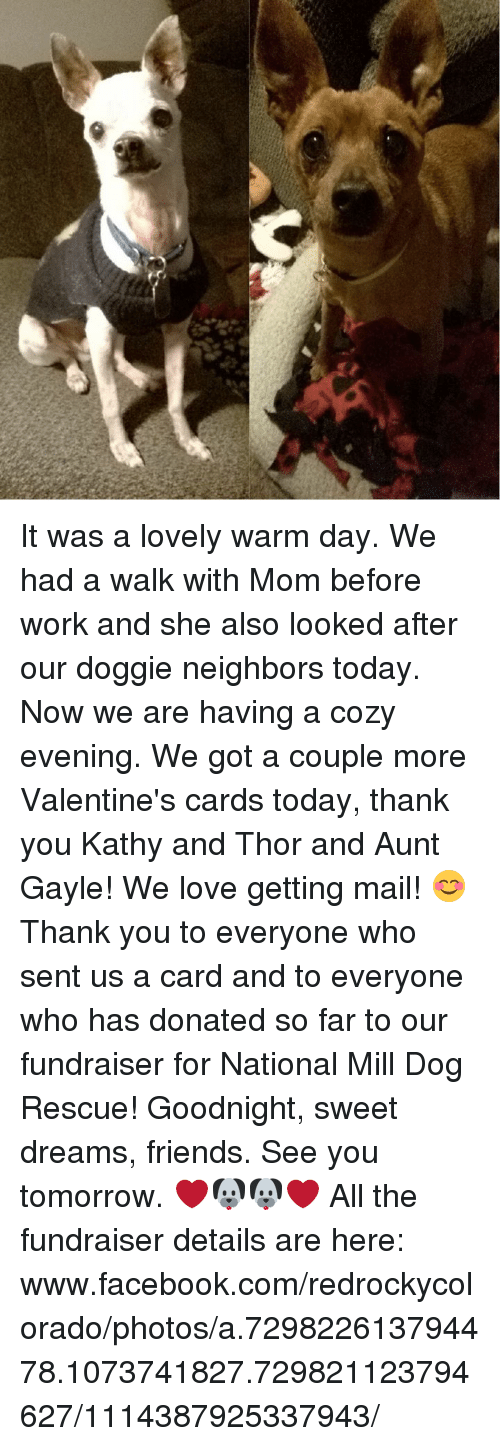 Facebook, Friends, and Love: It was a lovely warm day. We had a walk with Mom before work and she also looked after our doggie neighbors today. Now we are having a cozy evening. We got a couple more Valentine's cards today, thank you Kathy and Thor and Aunt Gayle! We love getting mail! 😊 Thank you to everyone who sent us a card and to everyone who has donated so far to our fundraiser for National Mill Dog Rescue! Goodnight, sweet dreams, friends. See you tomorrow. ❤🐶🐶❤   All the fundraiser details are here: www.facebook.com/redrockycolorado/photos/a.729822613794478.1073741827.729821123794627/1114387925337943/