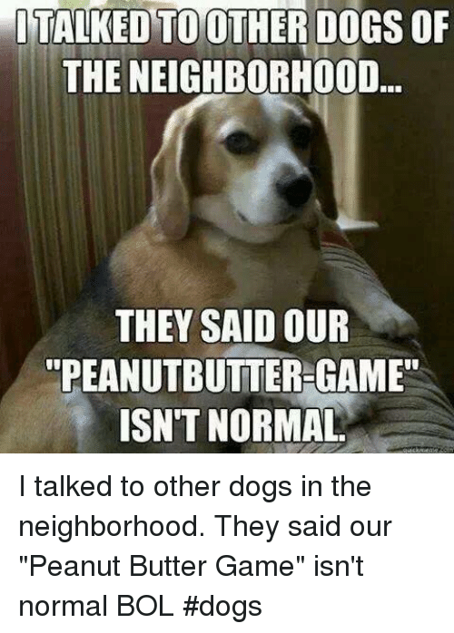 "Dogs, Memes, and Game: ITALKED  TOOTHER  DOGS  OF  THE NEIGHBORHOOD  THEY SAID OUR  ""PEANUTBUTTER GAME""  ISN'T NORMAL I talked to other dogs in the neighborhood. They said our ""Peanut Butter Game"" isn't normal     BOL   #dogs"