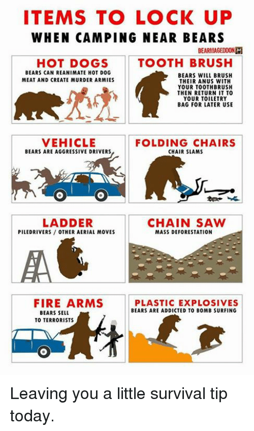 Items To Lock Up When Camping Near Bears Bearmageddon Hot