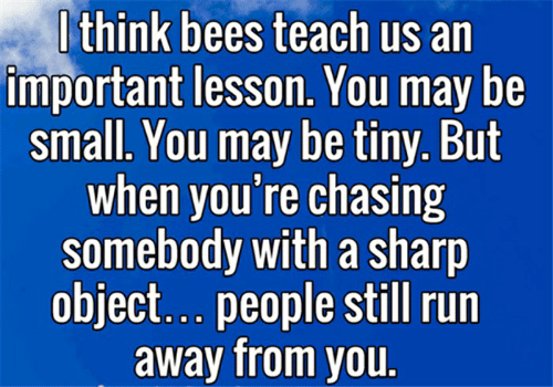 Run, Bees, and Sharp: Ithink bees teach us an  important lesson. You may be  small. You may be tiny. But  when you're chasing  somebody with a sharp  object... people still run  away from you.