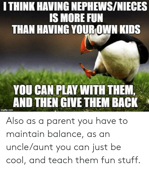 Cool, Kids, and Stuff: ITHINK HAVING NEPHEWS/NIECES  S MORE FUN  THAN HAVING YOUR OWN KIDS  YOU CAN PLAY WITH THEM,  AND THEN GIVE THEM BACK Also as a parent you have to maintain balance, as an uncle/aunt you can just be cool, and teach them fun stuff.