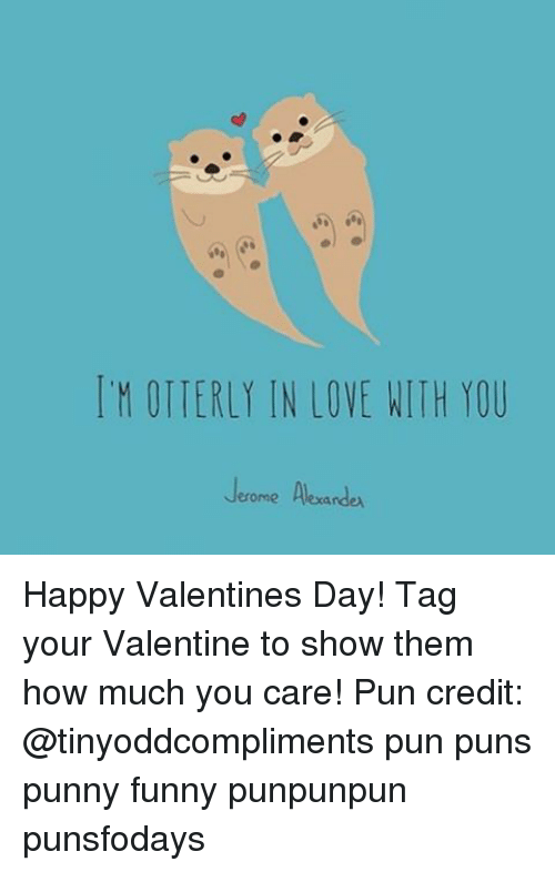 Image of: Shih Tzu Memes Meme Itm Otierly In Love With You Jerome Alexande Happy Valentines Day