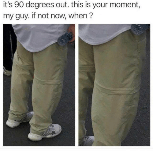 Dank, 🤖, and Moment: it's 90 degrees out. this is your moment,  my guy. if not now, when?