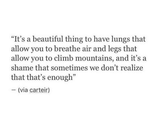 "Beautiful, Air, and Shame: ""It's a beautiful thing to have lungs that  allow you to breathe air and legs that  allow you to climb mountains, and it's a  shame that sometimes we don't realize  that that's enough""  - (via carteir)"