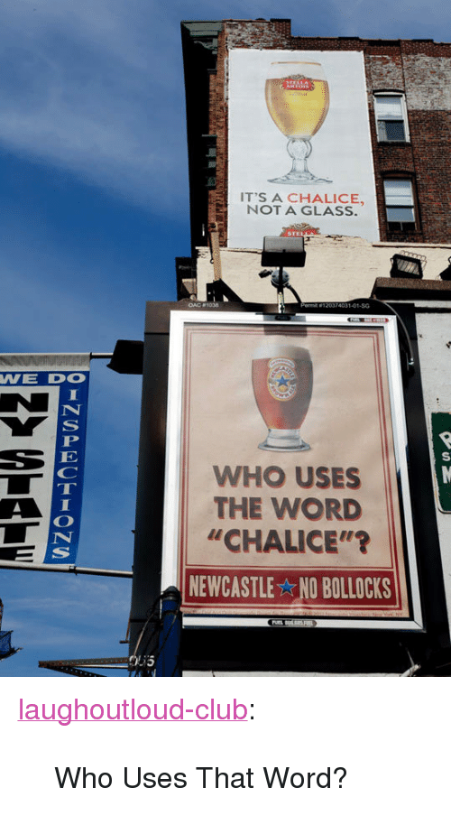 """Club, Tumblr, and Blog: IT'S A CHALICE,  NOT A GLASS.  74031-01-SG  WE DO  WHO USES  THE WORD  """"CHALICE""""'?  NEWCASTLE NO BOLLOCKS <p><a href=""""http://laughoutloud-club.tumblr.com/post/172140898102/who-uses-that-word"""" class=""""tumblr_blog"""">laughoutloud-club</a>:</p>  <blockquote><p>Who Uses That Word?</p></blockquote>"""