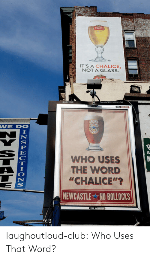 """Club, Tumblr, and Blog: IT'S A CHALICE,  NOT A GLASS.  74031-01-SG  WE DO  WHO USES  THE WORD  """"CHALICE""""'?  NEWCASTLE NO BOLLOCKS laughoutloud-club:  Who Uses That Word?"""