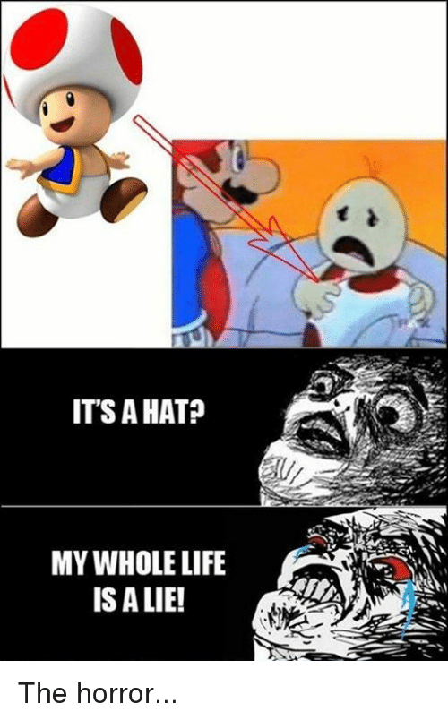 its a hat my whole life is a lie the 3865349 ✅ 25 best memes about life is a lie life is a lie memes