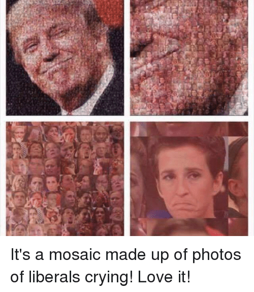 Memes, Liberalism, and 🤖: It's a mosaic made up of photos of liberals crying! Love it!