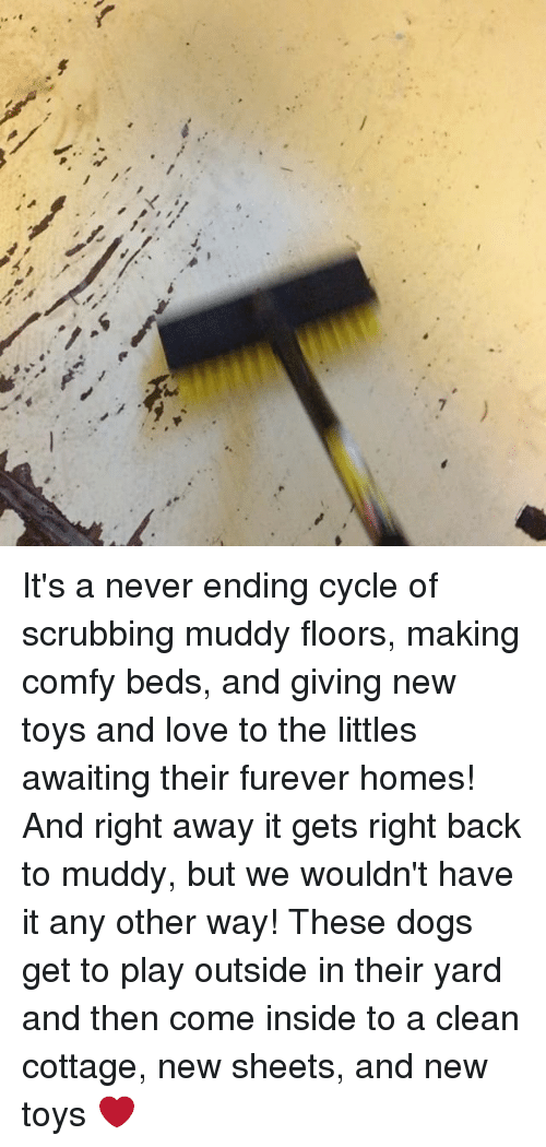 Its A Never Ending Cycle Of Scrubbing Muddy Floors Making Comfy