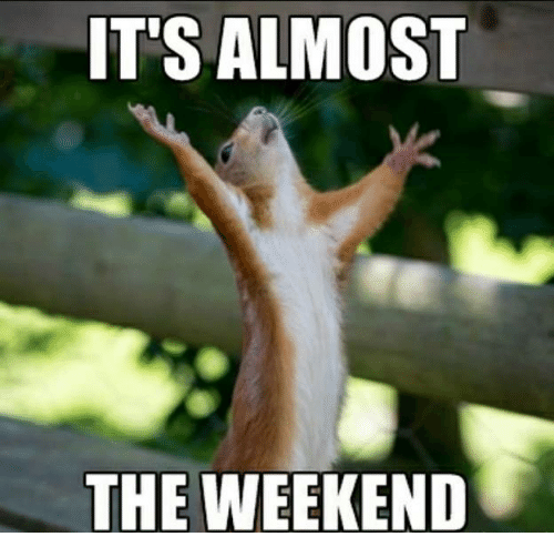 Memes, The Weekend, and 🤖: IT'S ALMOST  THE WEEKEND