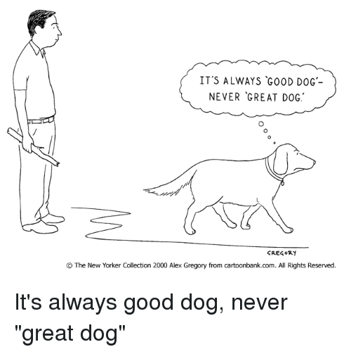 it s always good dog never great dog cregory the new yorker