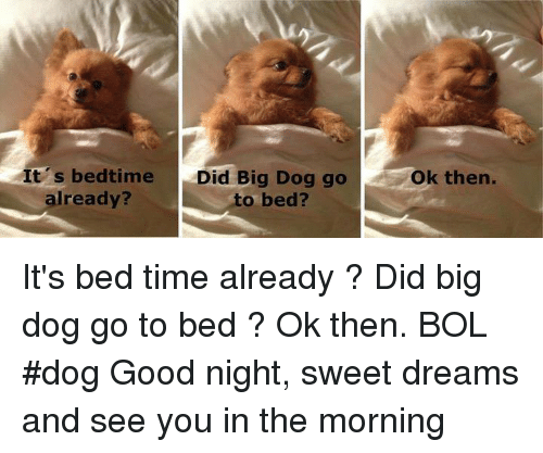 25 Best Memes About Good Night Sweet Dreams Good Night