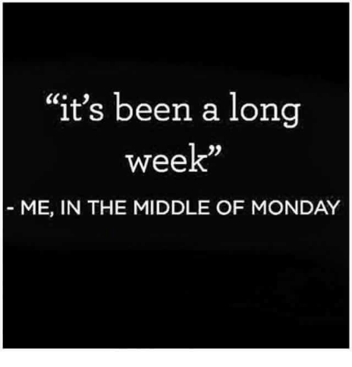 """Memes, The Middle, and Monday: """"it's been a long  week""""  ME, IN THE MIDDLE OF MONDAY"""