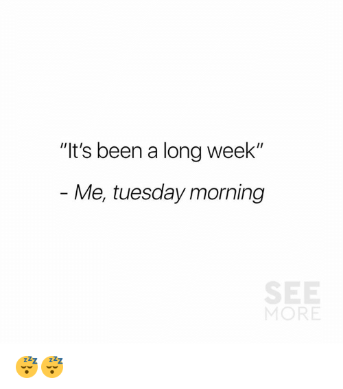 """Dank, Tuesday Morning, and Been: """"It's been a long week""""  Me, tuesday morning  SE  MORE 😴😴"""
