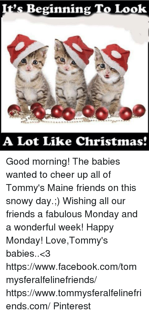 It\'s Beginning to Look a Lot Like Christmas Good Morning! The Babies ...