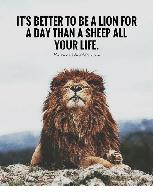 Its Better To Be A Lion For A Day Than A Sheep All Your Life