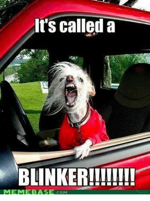 Image result for blinker meme