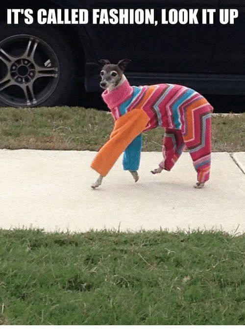 Fashion, Look, and  Called: IT'S CALLED FASHION, LOOK IT UP