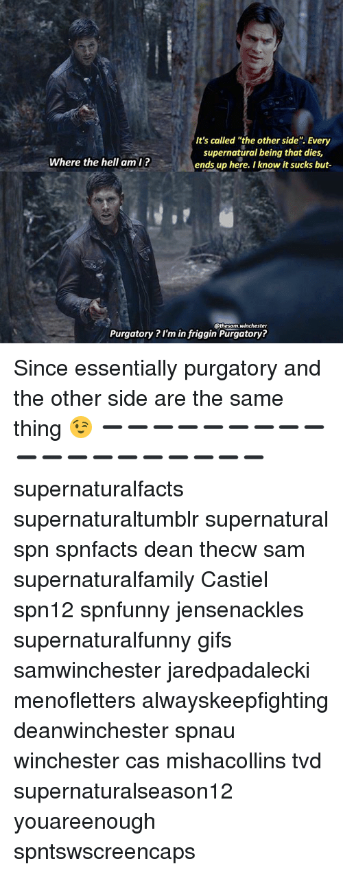 "Memes, Gifs, and Supernatural: It's called ""the other side"". Every  supernatural being that dies,  ends up here. I know it sucks but-  Where the hell aml?  @thesam.winchester  Purgatory ? I'm in friggin Purgatory? Since essentially purgatory and the other side are the same thing 😉 ➖➖➖➖➖➖➖➖➖➖➖➖➖➖➖➖➖➖➖ supernaturalfacts supernaturaltumblr supernatural spn spnfacts dean thecw sam supernaturalfamily Castiel spn12 spnfunny jensenackles supernaturalfunny gifs samwinchester jaredpadalecki menofletters alwayskeepfighting deanwinchester spnau winchester cas mishacollins tvd supernaturalseason12 youareenough spntswscreencaps"