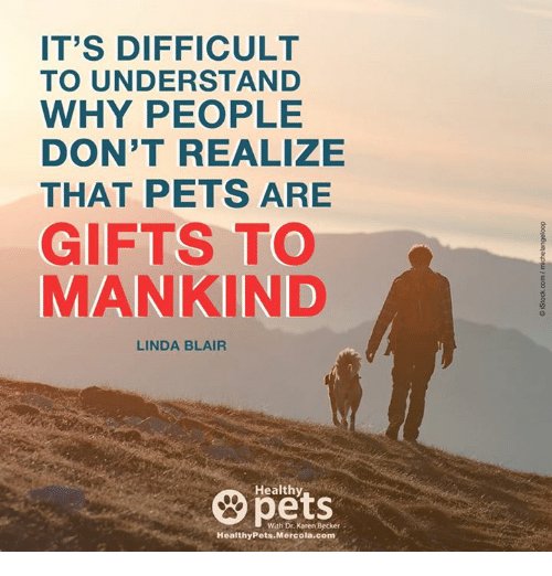 Memes, 🤖, and Linda Blair: IT'S DIFFICULT  TO UNDERSTAND  WHY PEOPLE  DON'T REALIZE  THAT PETS ARE  GIFTS TO  MANKIND  LINDA BLAIR  Healthy  With Dr. Karen Becker  Healthy Pets Mercola.com