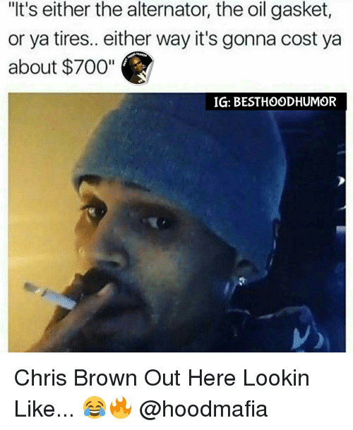 "Chris Brown, Memes, and 🤖: ""It's either the alternator, the oil gasket,  or ya tires.. either way it's gonna cost ya  about $700""  IG: BEST HOOD HUMOR Chris Brown Out Here Lookin Like... 😂🔥 @hoodmafia"