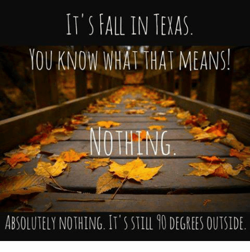 Image result for fall in texas meme