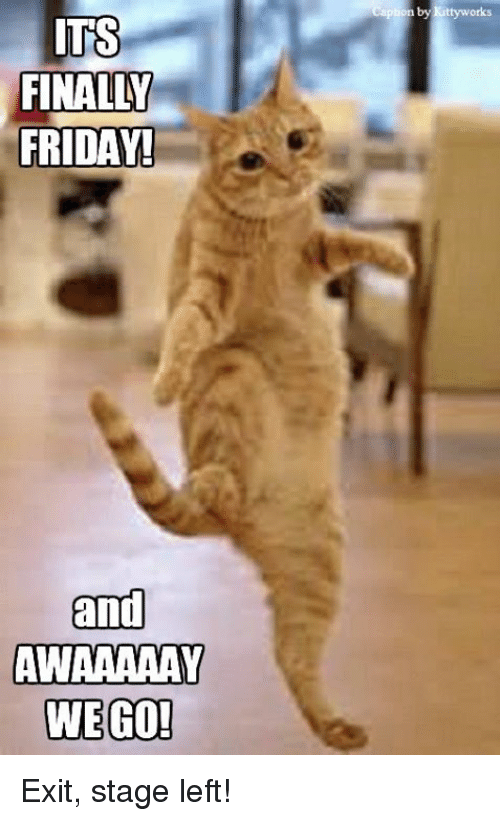 Friday, Memes, and 🤖: ITS  FINALLY  FRIDAY!  and  AWAAAAAY  WE GO!  tion by Kittywork Exit, stage left!