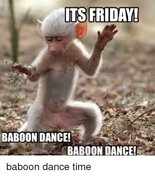 ITS FRIDAY! BABOON DANCE! BABOON DANCE | Friday Meme on ME ME