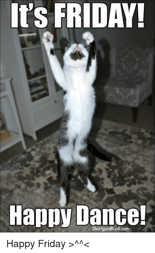 Funny Happy Dance Meme : Happy friday dance cat pixshark images
