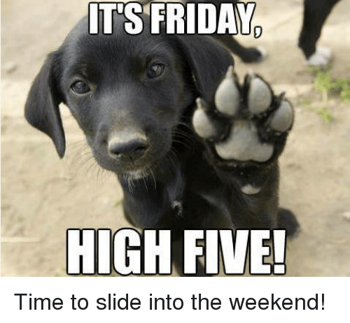 Friday, It's Friday, and Memes: ITS FRIDAY  HIGH FIVE! Time to slide into the weekend!