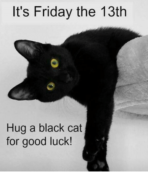 Friday The 13th Cat Meme Images