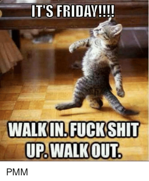 It's Friday, Memes, and 🤖: IT'S FRIDAY  WALKIN FUCK SHIT  UP WALKOUT PMM