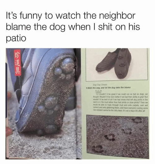 Dank, Dogs, and Funny: It's funny to watch the neighbor  blame the dog when I shit on his  patio  Dog Day Shoes  Wak way, and let the dog take the blame  be great we could run as tast as dogs  tog Wouldt it be even beter if we had their ability to grip? Bt  MOuld be best of al t we had shoes that h dog prints in the  sand or in the mud ather than fot prints or shoe prints? Then we  MOuid te able to rack through mud and onto carpets, over wet  anto gidening foons and have everyone cursing some  ron-eentcine for the dity deed t's not a dog's Me after all  cennt  金道具,