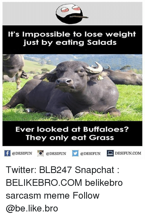 Be Like, Meme, and Memes: It's Impossible to lose weight  just by eating Salad  Ever looked at Buffaloes?  They only eat Grass  @DESIFUN@DESIFUN  @DESIFUN DESIFUN.COM Twitter: BLB247 Snapchat : BELIKEBRO.COM belikebro sarcasm meme Follow @be.like.bro