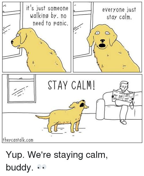 Memes, 🤖, and Stay: it's just someone everyone just  walking by. no  stay calm.  need to panic  li  STAY CALM  they cant alk.com Yup. We're staying calm, buddy. 👀