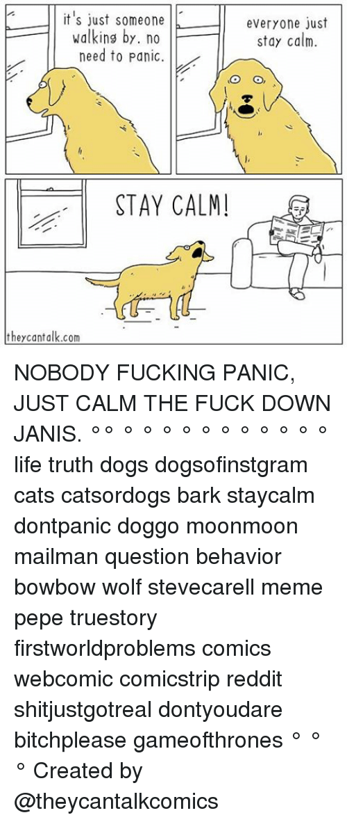 Cats, Dogs, and Fucking: it's just someone  walking by. no  need to panic  STAY CALM!  they cant alk.com  everyone just  stay calm. NOBODY FUCKING PANIC, JUST CALM THE FUCK DOWN JANIS. °° ° ° ° ° ° ° ° ° ° ° ° life truth dogs dogsofinstgram cats catsordogs bark staycalm dontpanic doggo moonmoon mailman question behavior bowbow wolf stevecarell meme pepe truestory firstworldproblems comics webcomic comicstrip reddit shitjustgotreal dontyoudare bitchplease gameofthrones ° ° ° Created by @theycantalkcomics