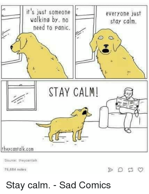 Dank, Sad, and Sad Comics: it's just someoneeveryone just  stay calm.  walking by. no  need to Panic.  STAY CALM  Source: theyosntal  76,684 notes Stay calm.  - Sad Comics