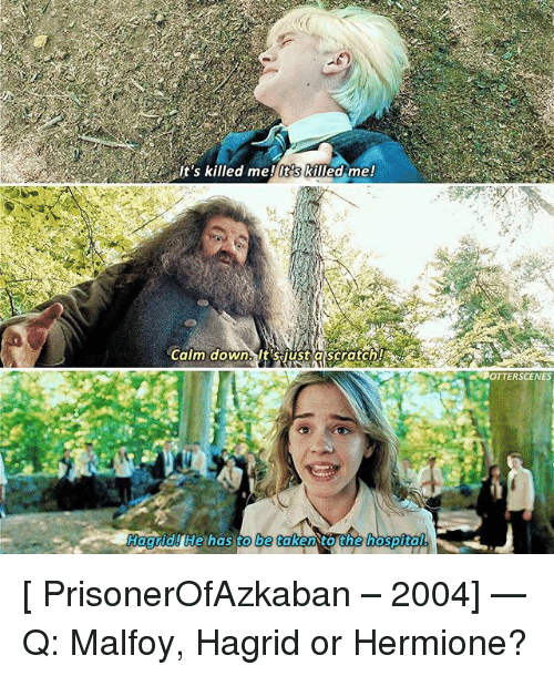 Hermione, Memes, and Taken: It's killed me! It's killed me!  OTTERSCENES  Hagrid He has to be taken to the hospita  . t [ PrisonerOfAzkaban – 2004] — Q: Malfoy, Hagrid or Hermione?