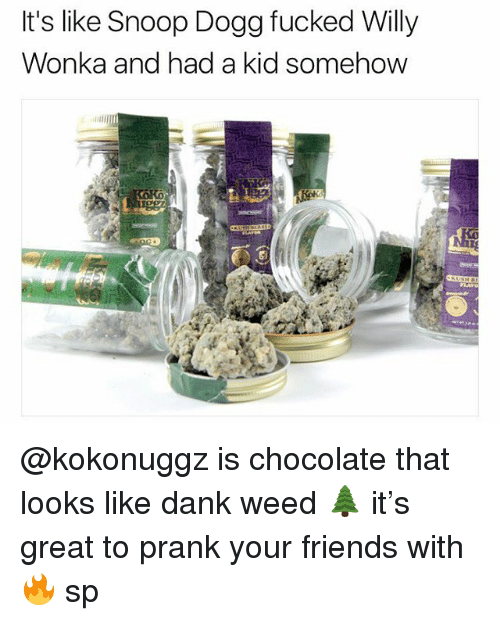 Dank, Friends, and Memes: It's like Snoop Dogg fucked Willy  Wonka and had a kid somehow @kokonuggz is chocolate that looks like dank weed 🌲 it's great to prank your friends with 🔥 sp