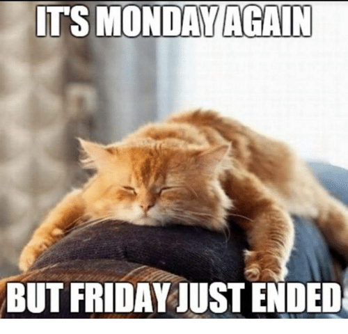 Friday, Memes, and Monday: ITS MONDAY AGAIN  BUT FRIDAY JUST ENDED